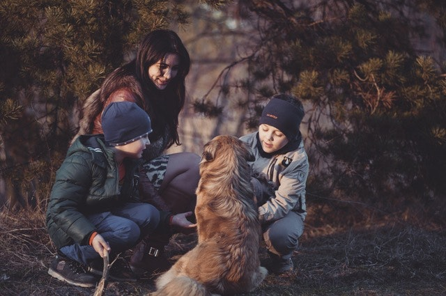 ペット産業とペットの家族化