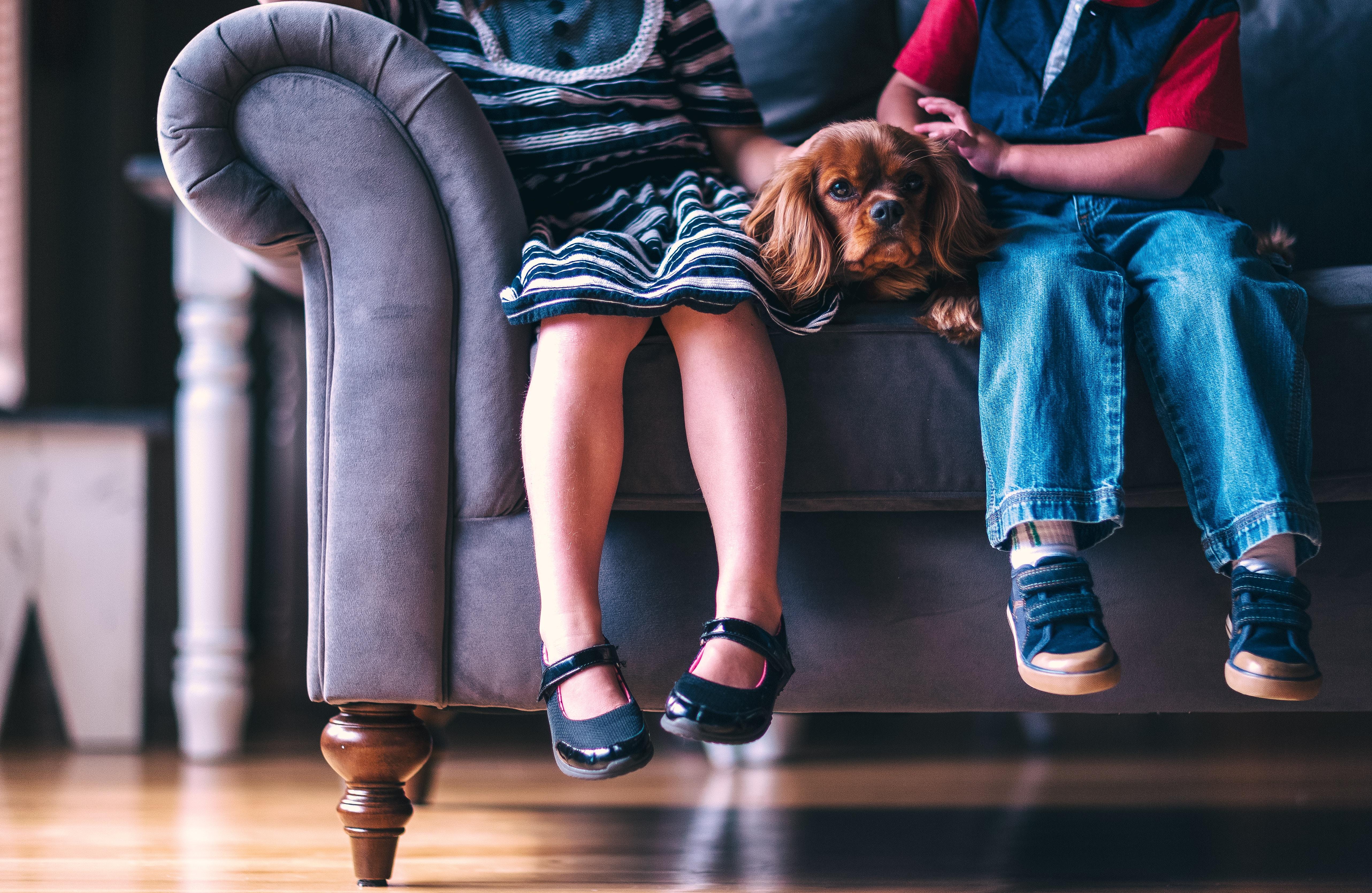 ソファに座る子供2人とキャバリア