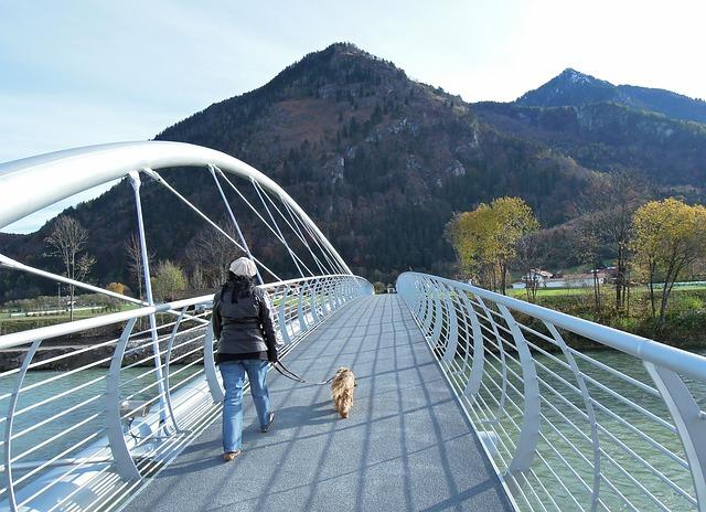 橋を渡る女性と犬