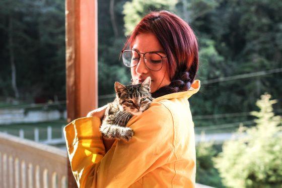 https://cheriee.jp/cat-life/2807/