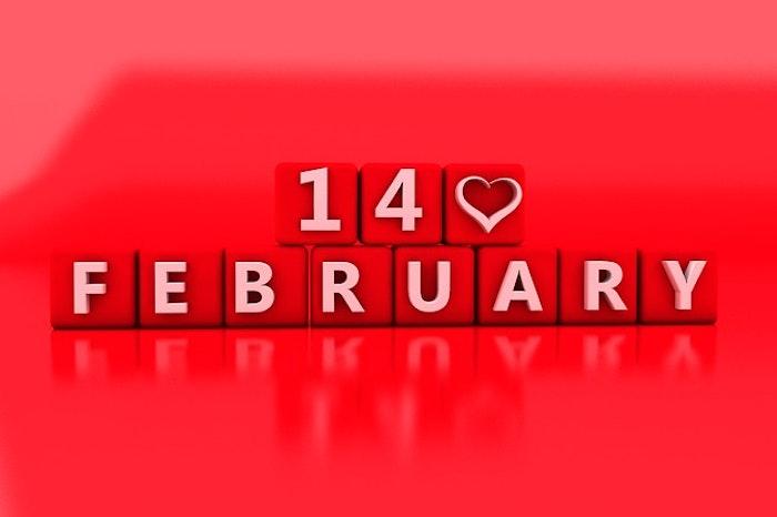 愛猫に特別なバレンタインをプレゼント