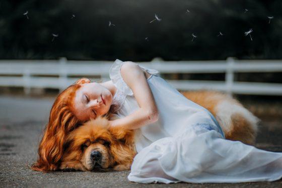 愛犬と愛犬が大好きな少女