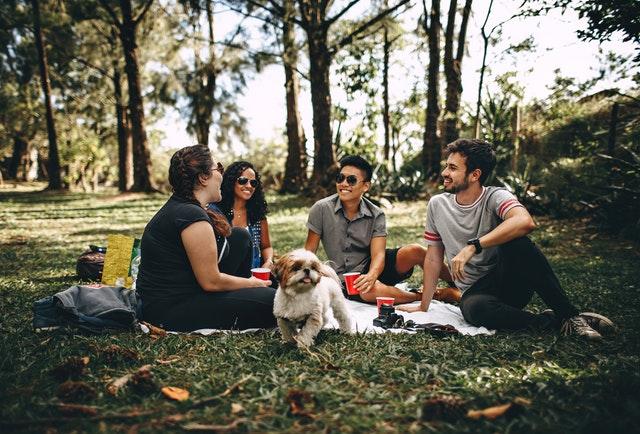 公園で日光浴