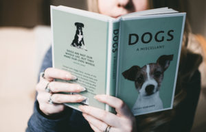 a book written about dogs