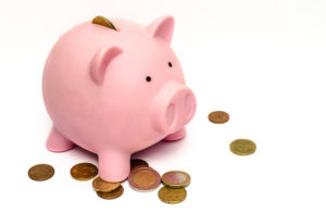 pig money