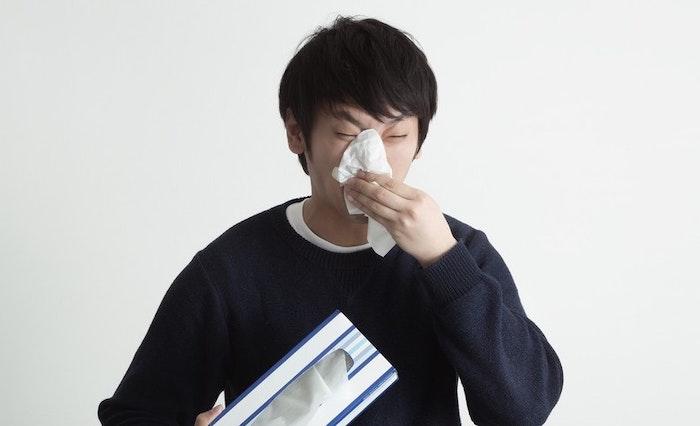 犬の花粉症と人の花粉症とでは症状が大きく違う