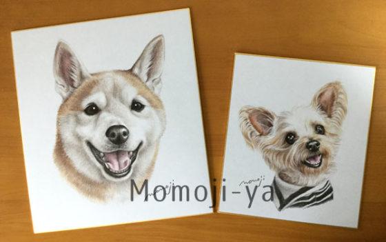 momojisan_shikishi
