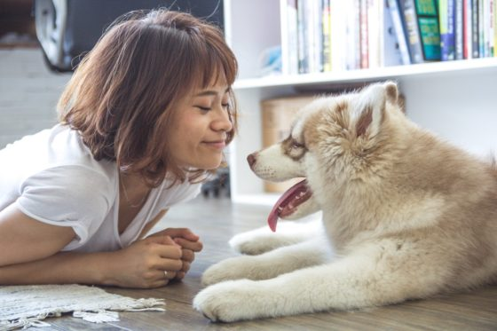 犬と向かい合う女性