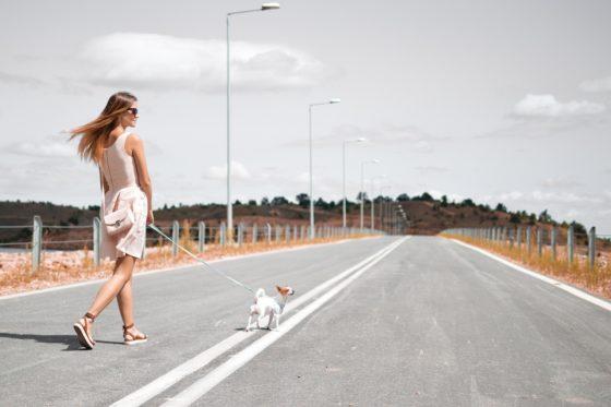 犬を連れて散歩する女性