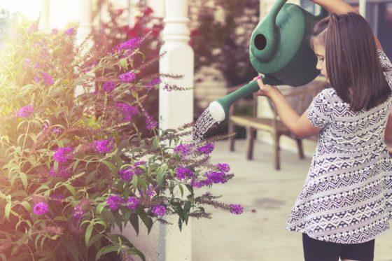 花に水をやる女の子