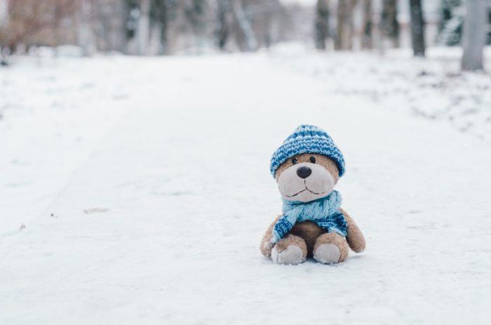 ぬいぐるみと雪