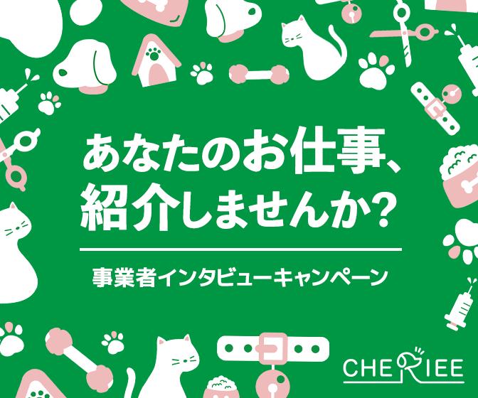 事業者インタビューキャンペーン!