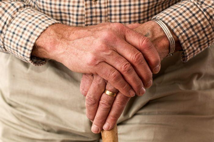高齢者がペットを飼う