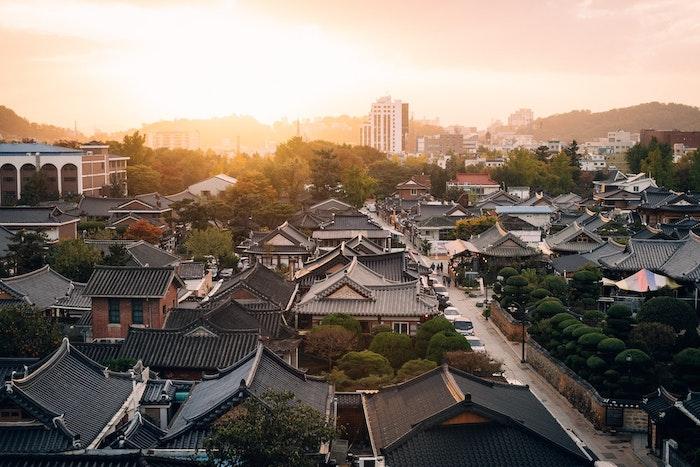 飼い主の教育が義務化された韓国