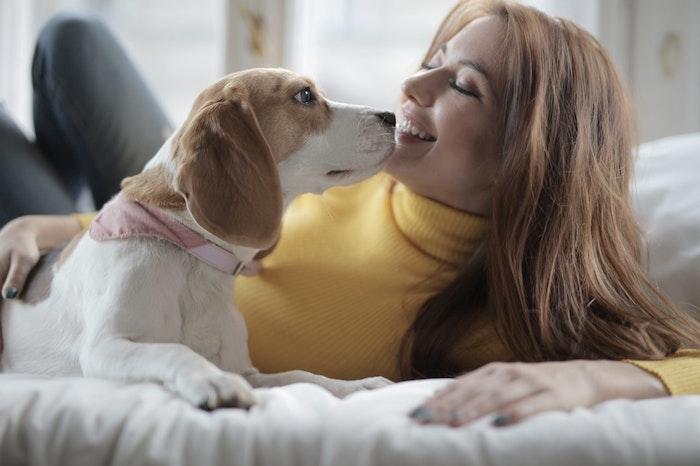 終生飼養を行うためにも愛犬との信頼関係を築こう