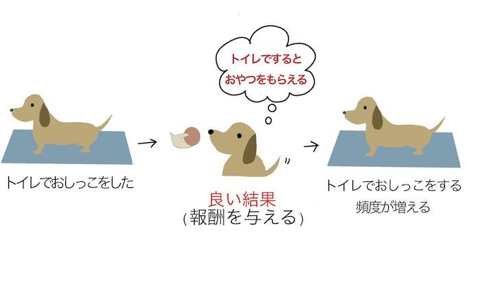 トイレトレーニング オペラント条件付け 良い結果