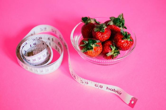 犬 肥満 ダイエット 減量 食事