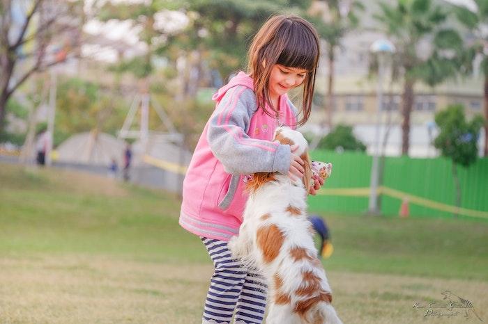犬 思春期 幸福度 向上
