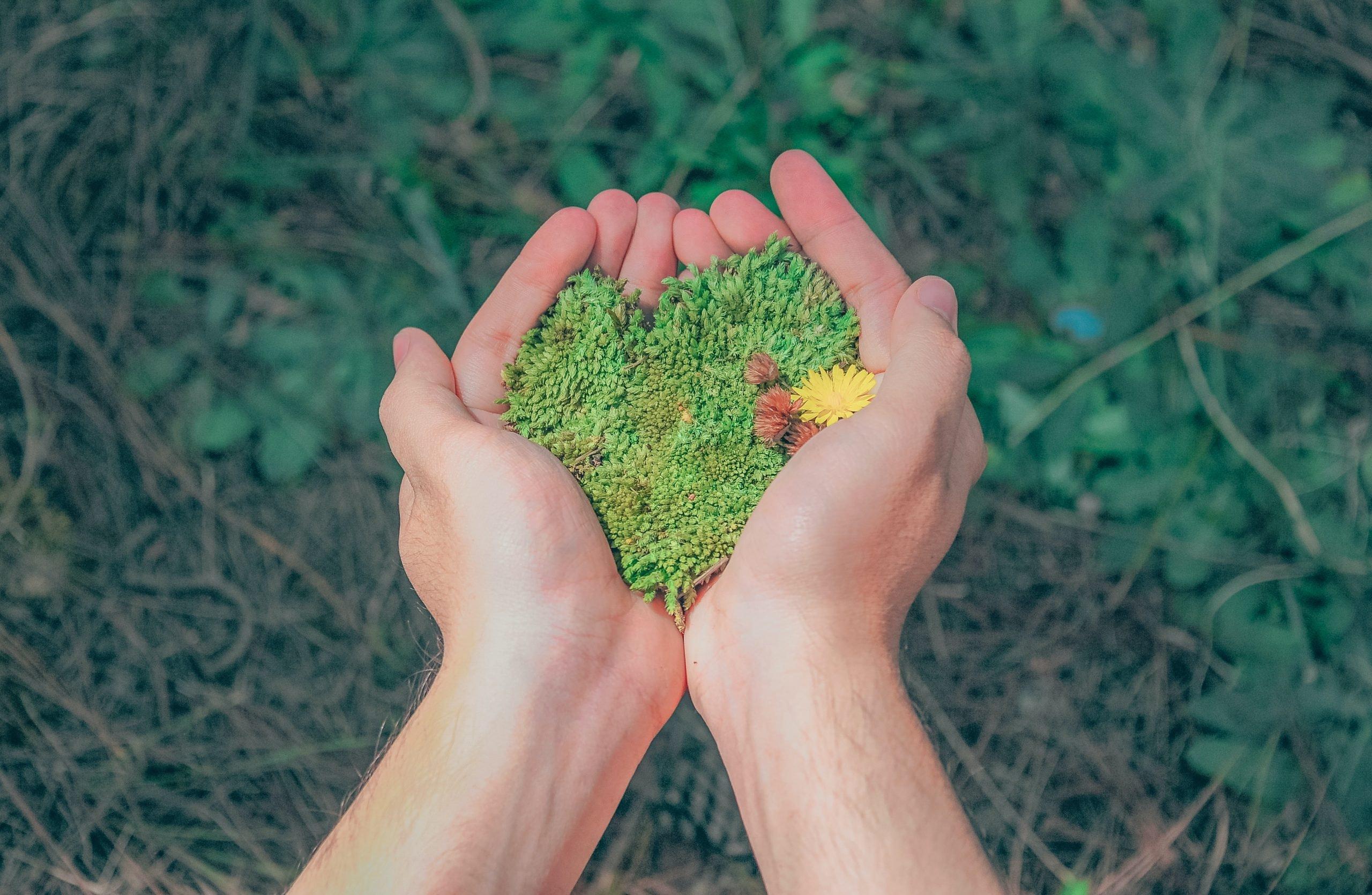 CSRとは企業の社会的責任