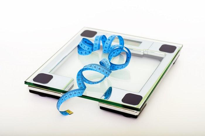 猫,肥満,ダイエット,食事管理,太りすぎ
