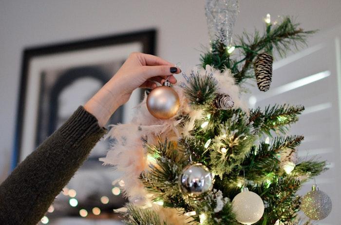 クリスマス, 映画,犬,おすすめ,動物