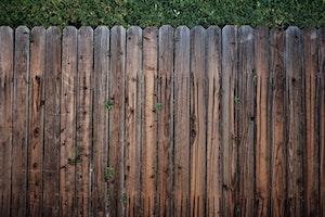 DIY,ステイホーム,フェンス,家具,庭,植物,犬,芝