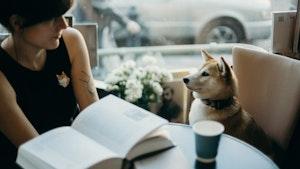 犬,飼う前,カウンセリング,ライフスタイル,ドッグスクール,動物の自由,生活