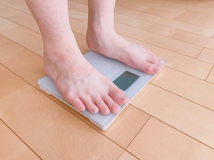 猫,体重,減少,削痩,病気,ダイエット,健康診断